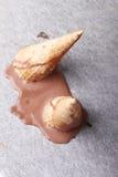 Melt мороженого шоколада упаденный конусами на земле Стоковые Фото