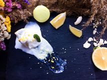 Melt white icecream with lemon on a black tray. White icecream with lemon on a black tray with old dry flowers on a background stock photography