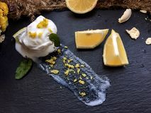 Melt white icecream with lemon on a black tray. White icecream with lemon on a black tray with old dry flowers on a background royalty free stock photography