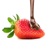 Melted chocolate pouring on fresh strawberry Royalty Free Stock Photography