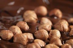 Melted dark chocolate with hazelnuts, making chocolate bar Royalty Free Stock Photo