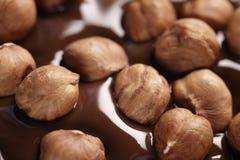Melted dark chocolate with hazelnuts, making chocolate bar Stock Photos