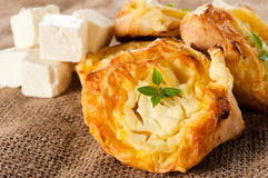 Melted feta cheese Royalty Free Stock Images