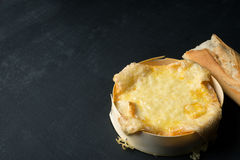 Melted oven Cheese Royalty Free Stock Images