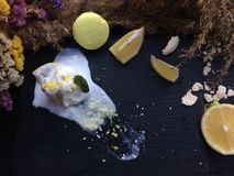 Melted white icecream with lemon on a black tray Royalty Free Stock Images