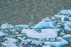Melting blue ice floes. In the water in the Argentine Patagonia stock image