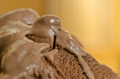 Melting cocoa and chocolate ice cream. Cocoa and chocolate ice cream detailed surface Stock Photos
