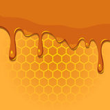 Melting honey on honeycomb texture. Vector illustration of melting honey on honeycomb texture vector illustration