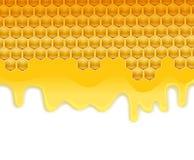 Melting honey on honeycombs Royalty Free Stock Photo