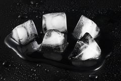 Melting Ice. On a black background with water droplets outside Royalty Free Stock Image