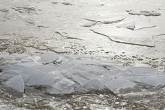 Melting ice in Baltic sea. Spring melting floating ice in Baltic sea. River estuary Stock Photos