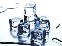 Melting ice cube Royalty Free Stock Photo