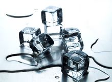 Melting ice cube Royalty Free Stock Image