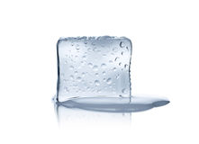 Melting ice cube. On white background Royalty Free Stock Photo