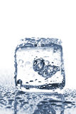 Melting ice cube with water dew Royalty Free Stock Photo