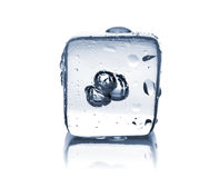Melting ice cube with water dew Royalty Free Stock Photos