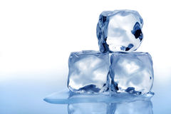 Melting ice cubes. Stack of three melting ice cubes with blue tone and white background Royalty Free Stock Photos