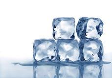Melting ice cubes. Macro stack of melting ice cubes with white background Stock Photos