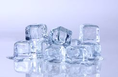 Melting Ice Cubes Royalty Free Stock Photo