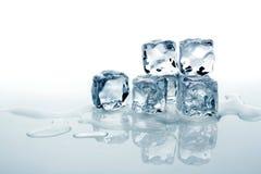 Melting ice cubes Royalty Free Stock Photo