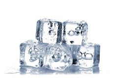 Melting ice cubes Stock Images