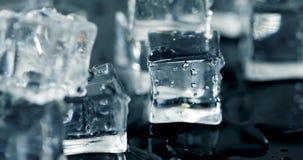 Melting ice cubes. 4k dolly shot stock footage