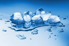 Melting ice cubes Stock Photo