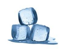 Melting ice cubes isolated on white background Stock Image
