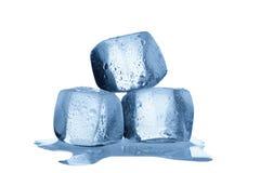 Melting ice cubes isolated on white background Stock Images