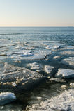 Melting ice floe at the sea Stock Images