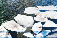 Melting ice floes in river in spring Royalty Free Stock Photos