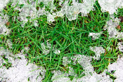 Melting ice on grass. Permafrost with melting ice on the new grow grass Royalty Free Stock Photo
