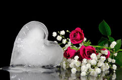 Melting ice heart with roses. Melting ice heart on mirror with roses Stock Photo