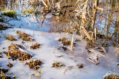Melting ice on the river. Spring evening Stock Photography