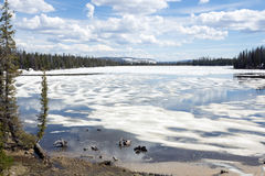 Melting ice and snow on the Lost Lake.  Uinta-Wasatch-Cache Nati Royalty Free Stock Photos