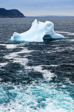 Melting iceberg. Off the coast of Newfoundland, Canada Royalty Free Stock Image