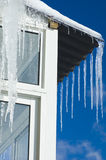 Melting Icicles Royalty Free Stock Image