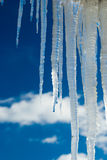 Melting icicles. Under the roof, the arrival of spring Stock Photos