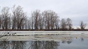 Melting the last ice on the river in early spring on a cloudy day. Flood on the river. Camera panning stock footage