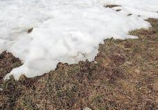 Melting snow Stock Image