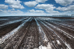 Melting snow on the field Royalty Free Stock Photos