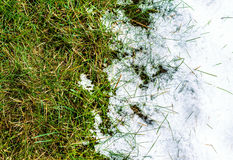Melting snow on grass - between winter and spring concept. Melting snow on green grass close up - between winter and spring concept background Stock Photos