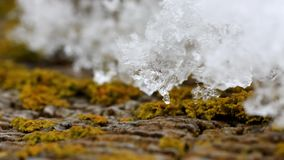Melting snow in high speed motion.