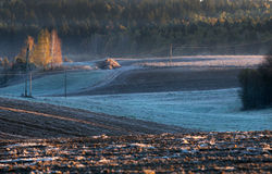 Melting snow on the plowed field. Isolated Stock Photography