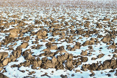 Melting snow on plowed soil. Spring view of plowed field. Royalty Free Stock Image