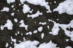Melting snow is showing land Royalty Free Stock Photo