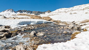Melting Snow in the Sierra Nevada Royalty Free Stock Photography
