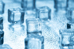 Melting transparent blue ice cubes on glass Stock Images