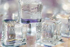 Melting transparent ice cubes on glass Royalty Free Stock Photo