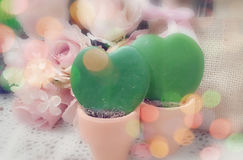 Memória do amor verdadeiro da eternidade de dois corações Fotos de Stock